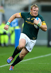 November 19, 2016 - Rome, Italy - Adriaan Strauss (S)  during the international match between Italy v South Africa at Stadio Olimpico on November 19, 2016 in Rome, Italy. (Credit Image: © Matteo Ciambelli/NurPhoto via ZUMA Press)
