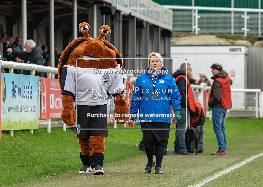 DOVER, UK - DECEMBER 29: Dover Athletic's mascot before the Vanarama National League match between Dover Athletic and Leyton Orient at the Crabble Stadium on December 29, 2018 in Dover, UK. (Photo by Jon Hilliger)