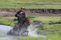 Mongolie. Province de Tov. Cavalier mongol. // Mongolia. Tov province. Horseman.