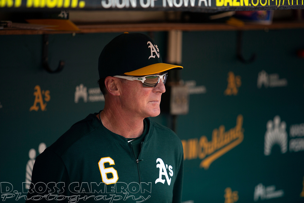 Oakland Athletics manager Bob Melvin (6) in the dugout before a baseball game against the Texas Rangers, Sunday, Sept. 22, 2019, in Oakland, Calif. (AP Photo/D. Ross Cameron)