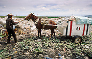 CIUDAD NEZAHUALCOYOTL, DF, MEXICO: A man pulls his horse cart through the garbage in the Ciudad Nezahualcoyotl dump on the edge of Mexico City, Sept. 23, 1993. Hundreds of people live in the dump and make a living by scavenging through the refuse brought to the dump by Mexico City's garbage trucks.  PHOTO ©  JACK KURTZ   POVERTY  HOMELESS  ECONOMY   SOCIAL ISSUES   LABOUR