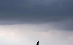 April 4, 2017 - Madrid, Spain - A man crosses the stone Bridge (Steinerne Brücke) over Danube river in Regensburg (Bavaria),Germany on 5th April, 2017. (Credit Image: © Juan Carlos Lucas/NurPhoto via ZUMA Press)