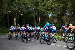 The peloton speed by at Boels Ladies Tour 2019 - Stage 5, a 154.8 km road race from Nijmegen to Arnhem, Netherlands on September 8, 2019. Photo by Sean Robinson/velofocus.com