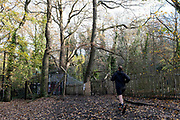 A runner approaches a gate where a protest is ongoing in Sydenham Hill Woods, against the proposed felling of two 100+ year-old oak trees, threatened by Southwark Council because of their proximity to 'Pissarro's' footbridge whose renovation has been deemed necessary by the local authority, on 18th November 2020, in London, England. The Nunhead to Crystal Palace (High Level) railway once passed through the Wood and Impressionist artist  Camille Pissarro (1830–1903) famously painted a railway landscape from the bridge in the 1870s. Sydenham Hill Wood forms part of the largest remaining tract of the old Great North Wood, a vast area of worked coppices and wooded commons that once stretched across south London. The habitat is home to more than 200 species of trees and plants as well as rare fungi, insects, birds and woodland mammals.