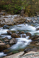 Fast moving water in Gold Creek at Golden Ears Provincial Park near Maple Ridge, British Columbia, Canada.   Photographed from along the North Beach Trail to the mouth of Gold Creek at Alouette Lake.
