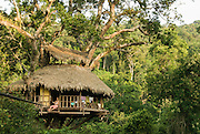 LAOS, Bokeo Nature Reserve, tropical rainforest, Gibbon Experience: ecotourism and conservation project, Kelly relaxing at distant tree house with zip line cable in view