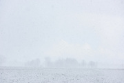 Distant trees on snow covered meadow in heavy spring snowfall, near Nīcgale, Latvia Ⓒ Davis Ulands | davisulands.com