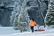 Winter Snow, Berks Co., PA Scene , Sledding at Gring's Mill