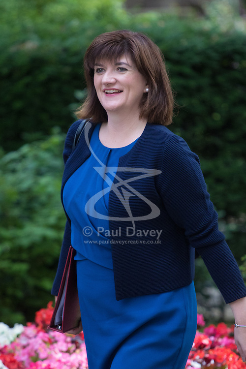 Education Secretary Nicky Morgan arrives at Prime Minister David Cameron's final cabinet meeting following Theresa May's anticipated takeover as Leader of the Conservative Party and Prime Minister
