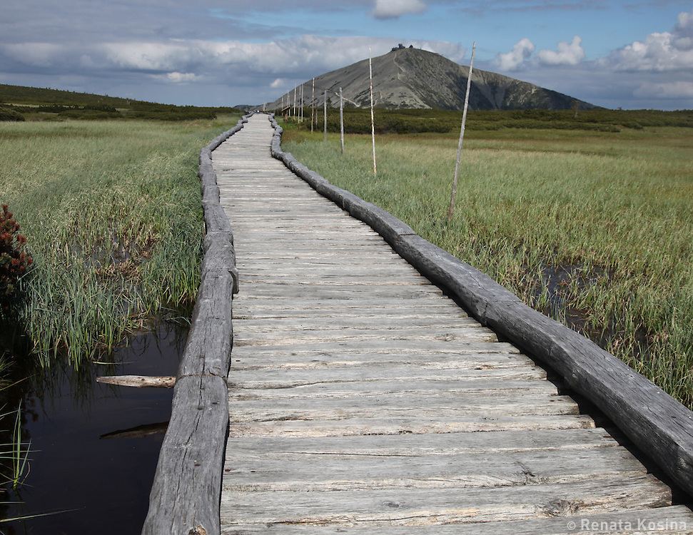 A boardwalk runs across mountain plateau bogs and eventualy changes into a steep rocky trail that leads to the summit of the highest mountain of the Czech Republic - Snezka. This trail runs along the Czech/Poland border and Snezka summit is shared between those two coutries. Hikers are free to visits both countries' summit huts - no passport needed.