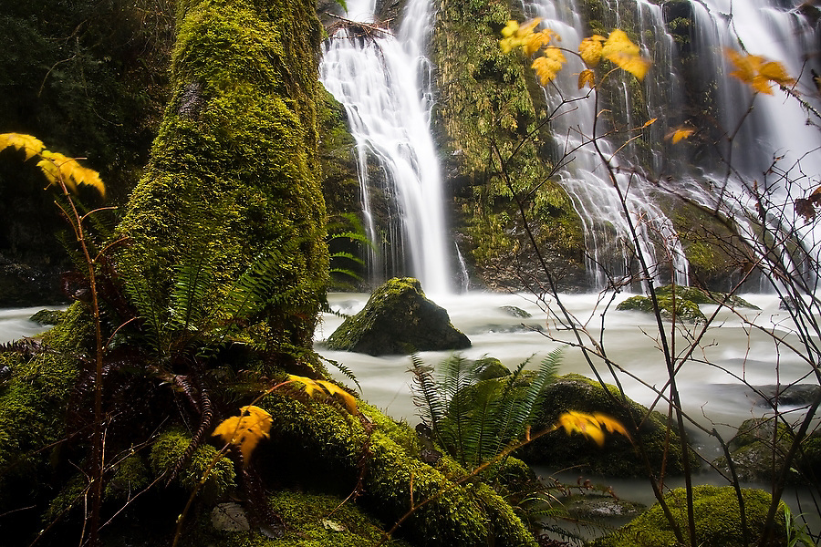 A series of waterfalls fall into the Boulder River as orange leaves blow in the wind, Mount Baker-Snoqualmie National Forest, Washington.
