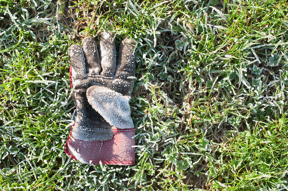 Frosty glove