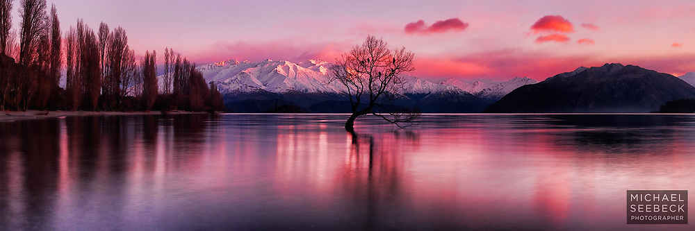 A high resolution panoramic photograph of dawn over Lake Wanaka, featuring the lone willow.<br /> <br /> I stood in this lake barefoot for over an hour to capture this image, and almost suffered frostbite as a consequence. Not recommended.<br /> <br /> Code: HZOQ0015