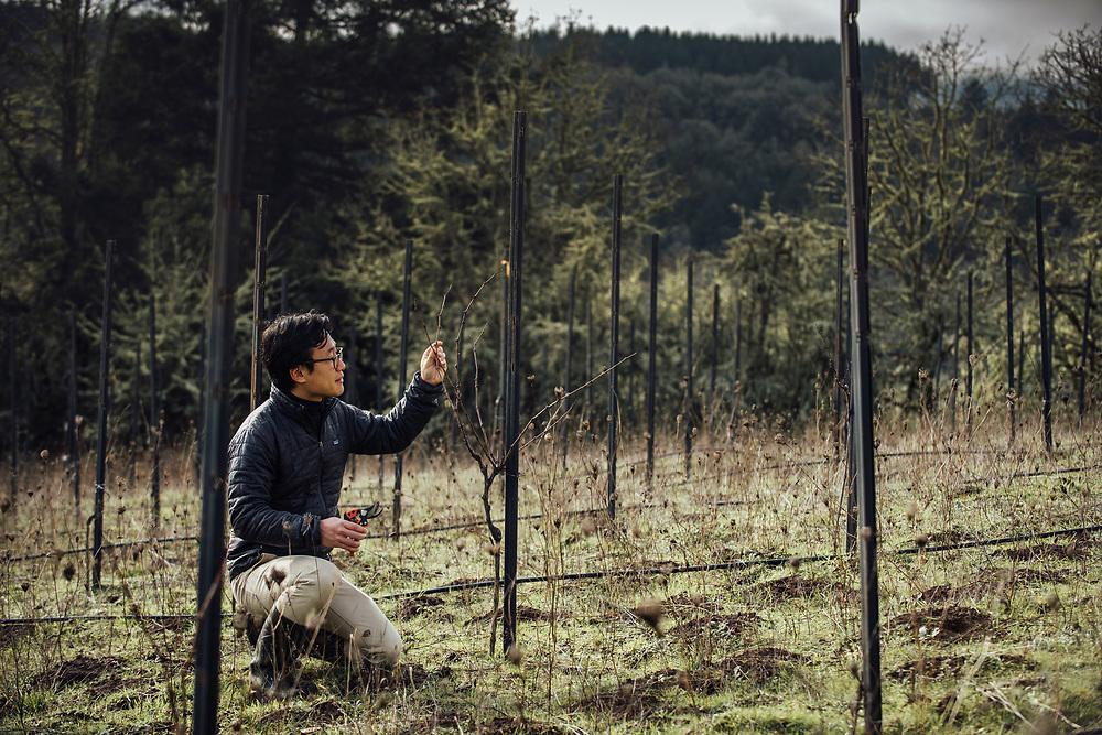 Junichi_Fujita_Portrait_ Oregon Wine Press