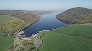 Lough Deravaragh County Westmeath 15-4-20 Sheep