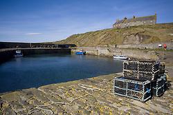 July 21, 2019 - Trunks On Stone Dock, Scotland (Credit Image: © John Short/Design Pics via ZUMA Wire)