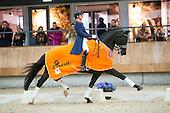 KNHS Indoorkampioenschappen