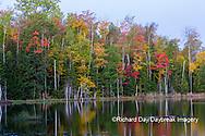 64776-02001 Red Jack Lake in fall color Alger Co.  MI