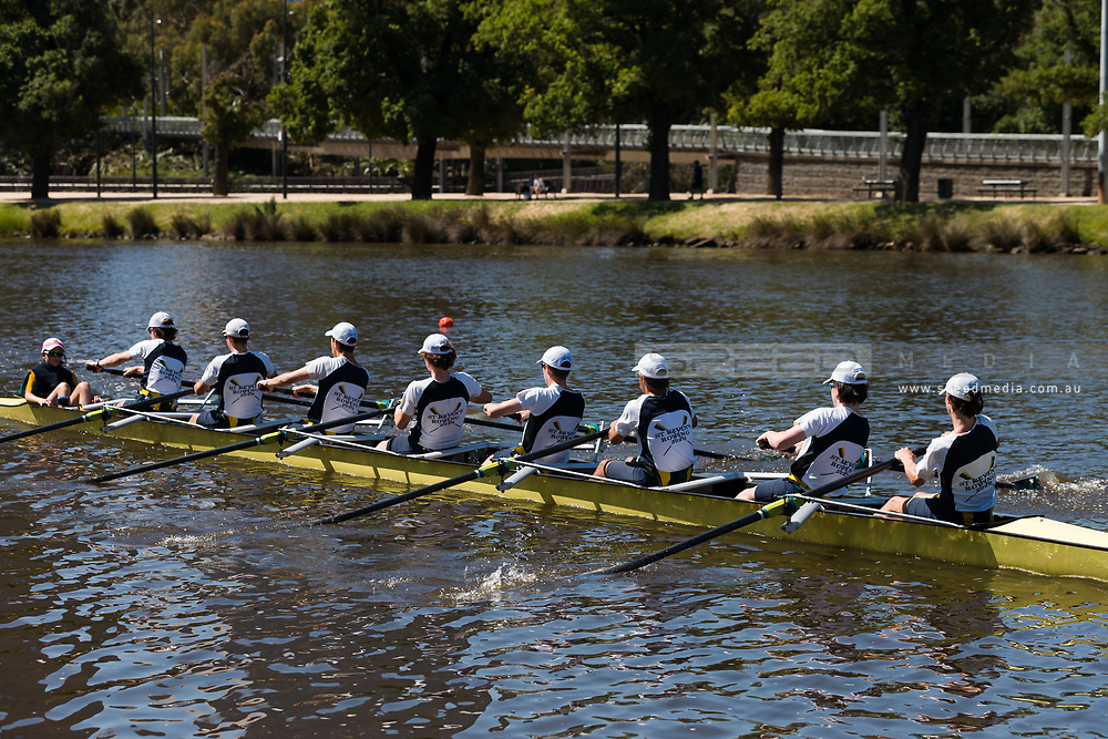 Rowers train on the Yarra during the 35th day of zero COVID-19 cases in Victoria, Australia. School and community sport is ramping up and as the weather improves, more people are venturing out and about to enjoy this great city. Pressure is mounting on Premier Daniel Andrews to keep his promise of removing all remaining restrictions. (Photo by Dave Hewison/Speed Media)