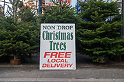 "A sign with the words 'Non Drop Christmas Trees Free Local Delivery' on display at Brixton Market on the 11th December 2019 in South London in the United Kingdom. Trees are considered ""non-drop"" if they retain their needles for significantly longer than traditional varieties."