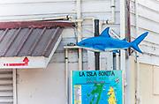 Corner of shark and main.