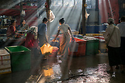 Early morning at the Wholesale Fish and Chicken Market, Mawlamyine, Myanmar