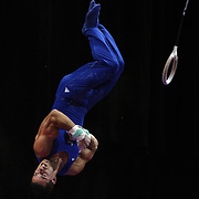 Jake Dalton, Norman, Oklahoma, in action on the Still Rings during the Senior Men Competition at The 2013 P&G Gymnastics Championships, USA Gymnastics' National Championships at the XL, Centre, Hartford, Connecticut, USA. 16th August 2013. Photo Tim Clayton