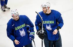 Klemen Pretnar and Andrej Tavzelj during practice session of Slovenian Ice Hockey National Team at training camp, on February 8th, 2016 in Ledna dvorana, Bled, Slovenia. Photo by Vid Ponikvar / Sportida