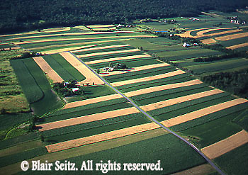 Southcentral Pennsylvania, Aerial Photographs Farmlands, Mixed Cultivation, Family Farm,  Berks County, Blue Ridge Mountains, PA