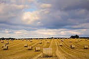 Straw bales below a stormy sky, Swinbrook, the Cotswolds, United Kingdom
