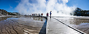 People wander the Grand Prismatic Spring boardwalk. Yellowstone National Park, Wyoming, USA. This image was stitched from multiple overlapping photos.