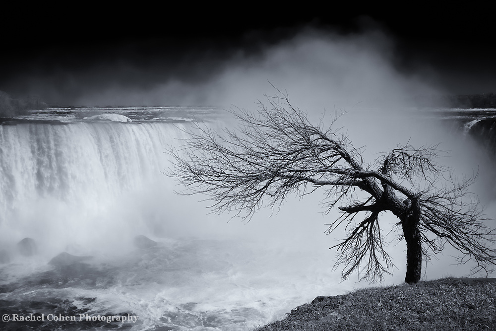 """""""As Winter Leaves Niagara Mono""""<br /> <br /> Gorgeous and moody! Beautiful Niagara Falls as winter is leaving, but before there are buds on the trees. A lone tree bows towards the falls!"""