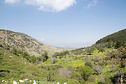 Israel, Upper Galilee, Amuka, Scenic spring landscape March 2009