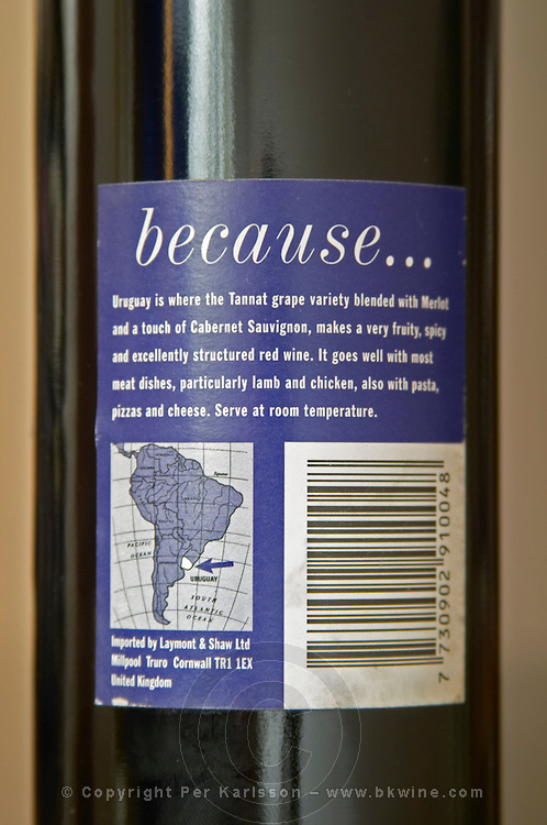 Bottle of Why Try Uruguay ? Tannat Merlot 2000, jocular funny humorous label made on the request of the UK importer. With the explanation on the back label Bodega Carlos Pizzorno Winery, Canelon Chico, Canelones, Uruguay, South America