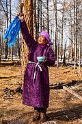 A Tsaatan women making traditional salt tea in the morning and then making a salt tea offering to the Shaman gods, Khovsgol Province, Mongolia