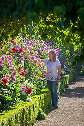 Ann Starling in front of the dahlia border at Rousham House Garden
