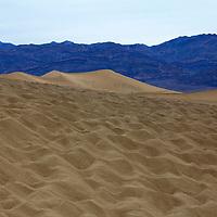USA, California, Death Valley. Mesquite Flat Dunes