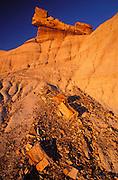 Evening light on pedestal log on Blue Mesa, Petrified Forest National Park, Arizona