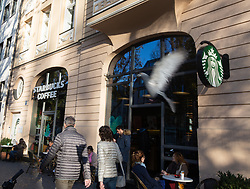November 10, 2018 - Munich, Bavaria, Germany - A branch of the American Coffeehouse Starbucks in Munich, Germany, on 10 November 2018. (Credit Image: © Alexander Pohl/NurPhoto via ZUMA Press)