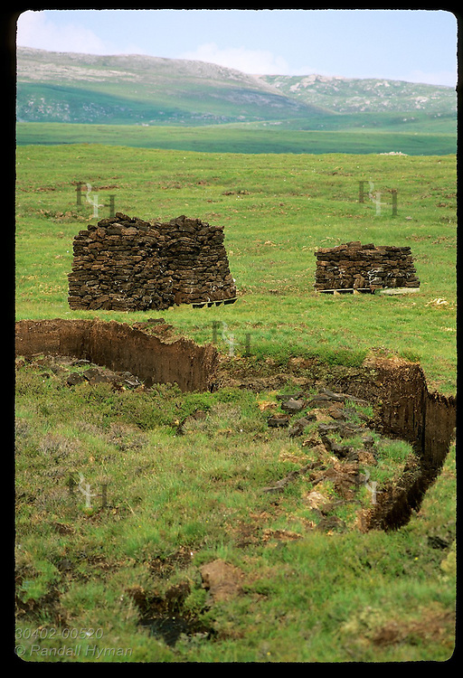 Piles of newly-harvested peat used in whisky making stand by gash in earth; Kyle of Durness. Scotland