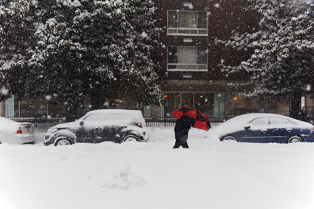 """A person makes their way down a snow packed M street NW during the """"snowzilla"""" blizzard on Saturday, January 23, 2016 in Washington, D.C."""