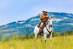 An Alberta Canada cowboy driving some unseen cows in the foothills of the Canadian Rockies.