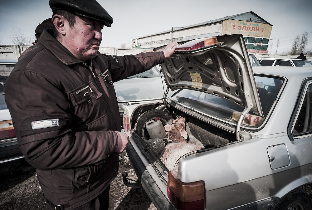 A buyer places his purchased live animal in the boot of his car.