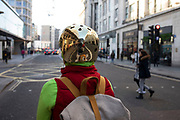 Female cyclist wearing a gold safety helmet on 21st January 2020 in London, England, United Kingdom. A bicycle helmet is designed to attenuate impacts to the head of a cyclist in falls while minimizing side effects such as interference with peripheral vision.