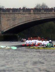 © Licenced to London News Pictures. 06/04/2014. London. UK.  <br /> Oxford University Blue boat are seen celebrating their victory over Cambridge University in the annual BNY Mellon Boat Race between the two crews in London, April 6th, 2014. Oxford beat Cambridge.<br /> Credit: Susannah Ireland