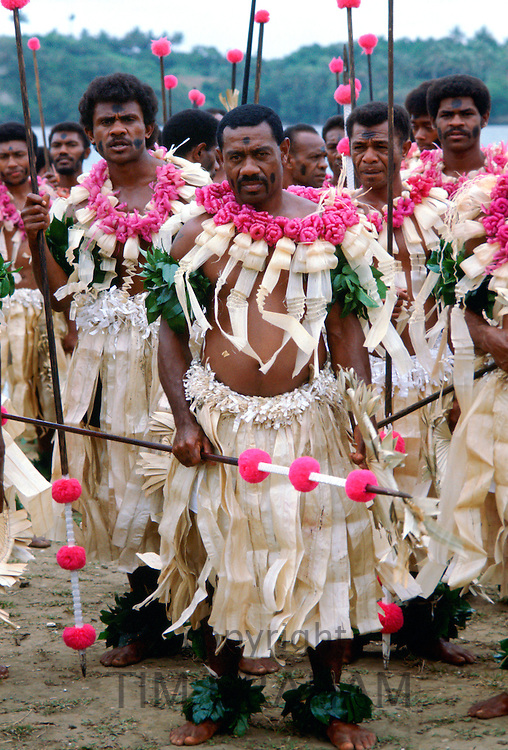 Fijian warriors with spears attending a tribal gathering in Fiji, South Pacific