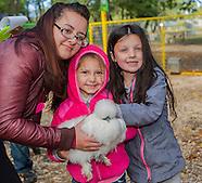 2014 10 19 Queens County Farm Fall 2015 brochure images