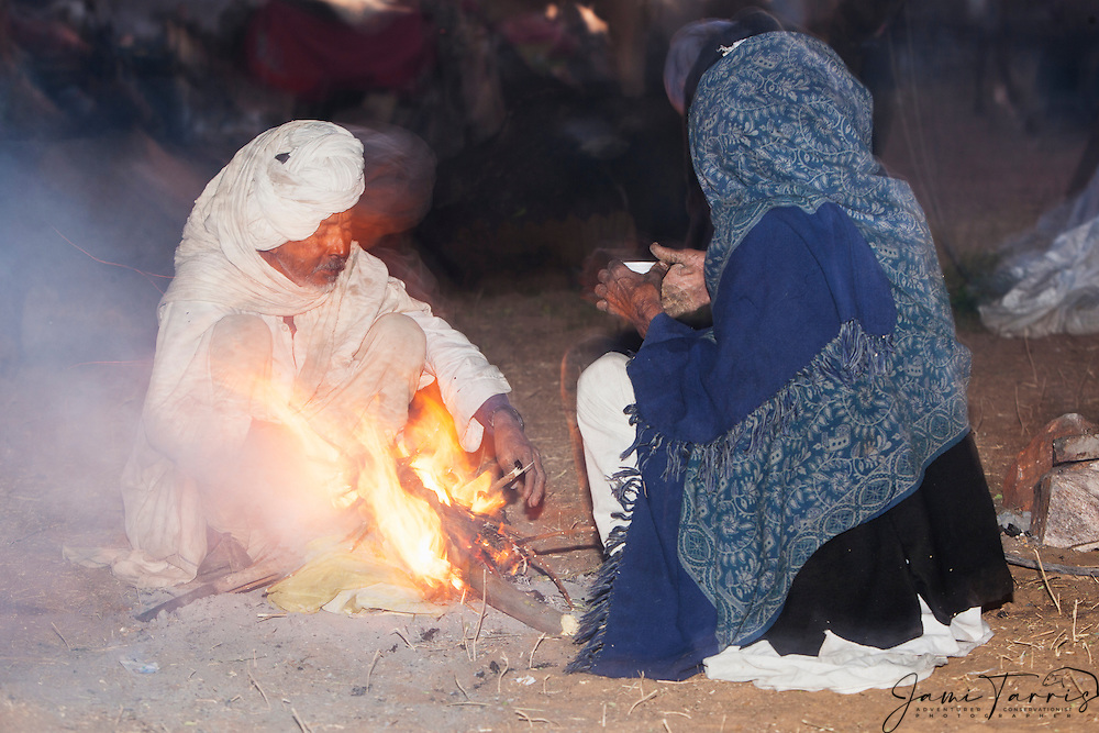 A small group of camel dealers drinking tea during the Pushkar camel fair, Pushkar, Rajasthan, India