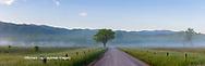 66745-04613 Hyatt Lane Great Smoky Mountains National Park TN
