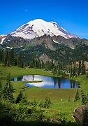 East face of Mount Rainier with Upper Tipsoo Lake in foreground